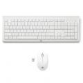 Pack Teclado y ratón inalámbricos HP C2710